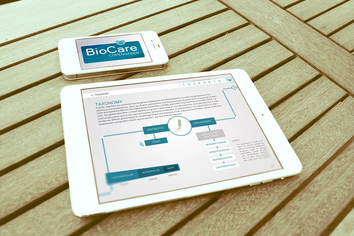 E-publikation