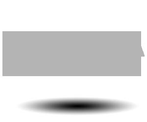 BESA Tool logo