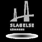 Slagelse kommune samarbejde