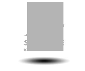 Slagelse kommune logo