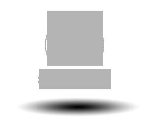 Fru Grundig Logo