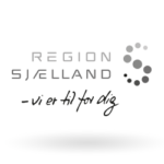 Region Zealand logo