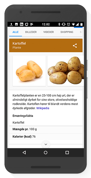 Knowledge Graph - Struktureret data