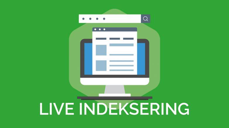 live indeksering af hjemmeside google og bing